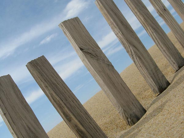 Beach Defences